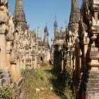 Indein, une forêt de stupas.  Photo Marchés d'Asie.